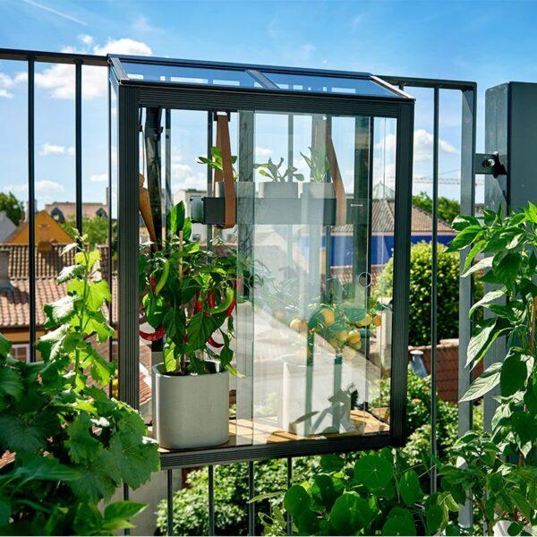 Juliana Urban Balcony mini drivhus 4 mm hærdet glas - sort